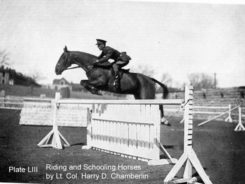 Harry Chamberlin jumping horse over white jump
